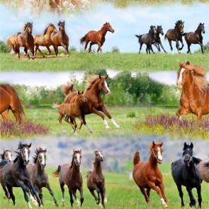 Heste i flok - voksdug med heste